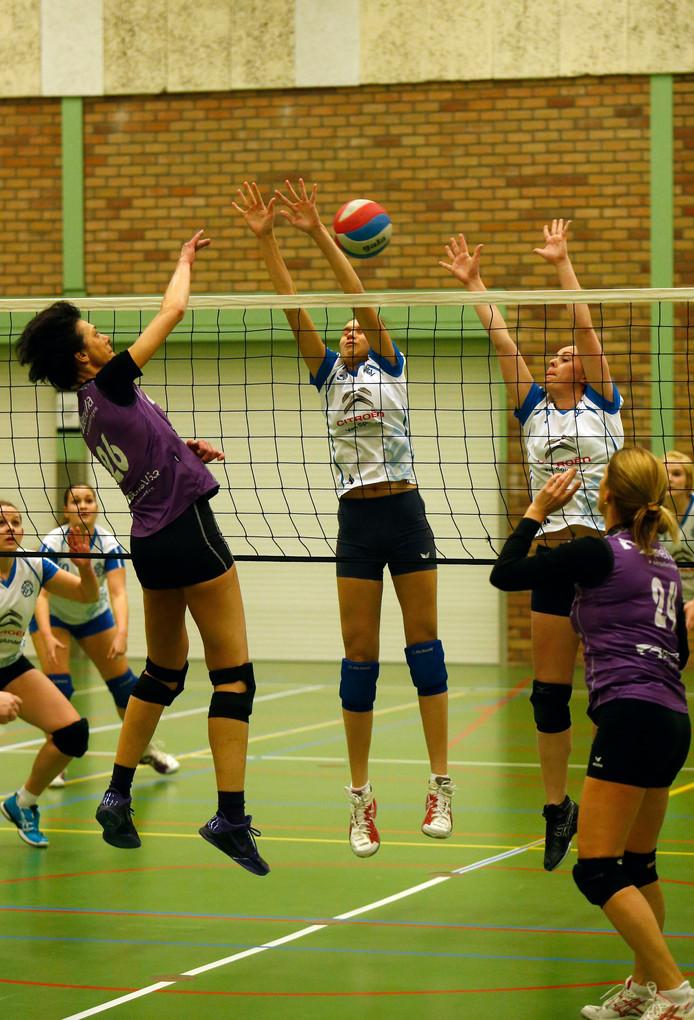 Volleyballers van vereniging DVO tegen Benevia.