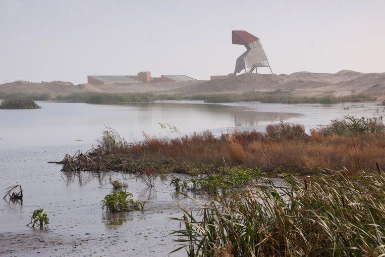 De Marker Wadden met in de haven een uitkijktoren, eind oktober 2019. Beeld Natuurmonumenten / Stefan Claessens