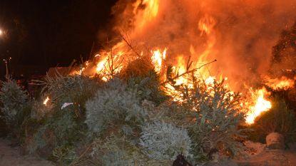 Fakkeltocht en kerstboomverbranding in Broekpark
