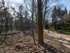 Bomen terug in kaalgeslagen Edes bos; maar het soebatten gaat door