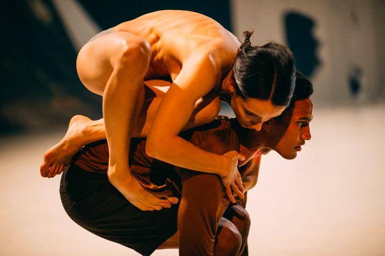 TAKE ROOT door Nederlands Dans Theater 1, choreografie: Marne en Imre van Opstal Beeld Rahi Rezvani