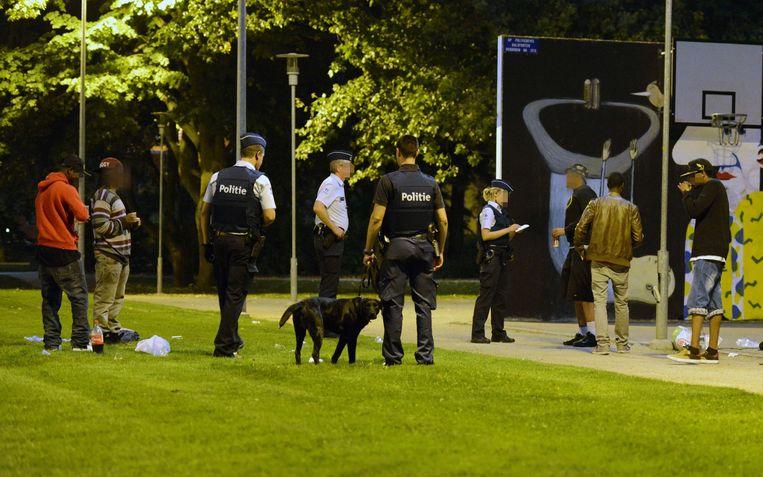 Drugshond Joy tijdens een politiecontrole op drugs en overlast in het Bruulpark.