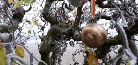 De kerstbal van Riet hangt altijd buiten: 'Telkens weer herinnert de bal aan ons thuis'