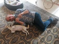 Johan Vlemmix omringd door puppy's en Rico Verhoeven kan een leuk trucje