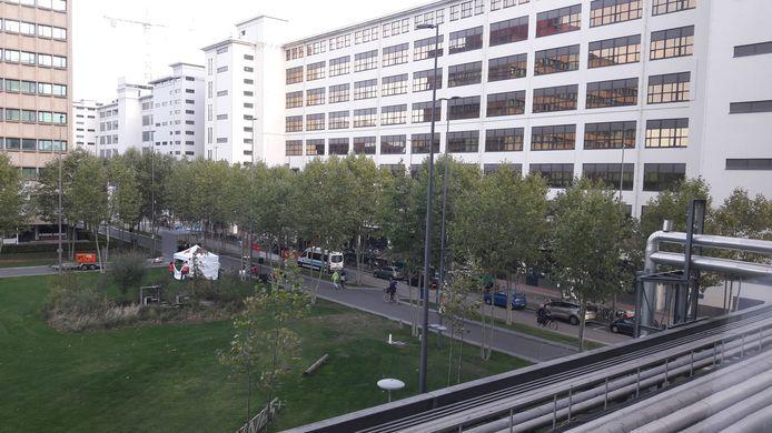 Torenallee Eindhoven: hier start zaterdagmorgen de wandeltocht van de Marathon Eindhoven