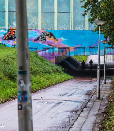 Burgerwacht in Helmerhoek Enschede na overvallen bij fietstunnels