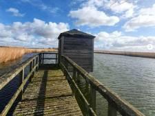 Voor de dierenliefhebbers: vogelkijkhutten in de Hoeksche Waard en op Flakkee open vanaf 3 juni