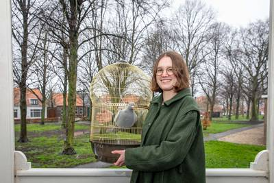 Filmmaakster Pien (20) diept dilemma's uit met duivenfilm, en ze zoekt nog hulp