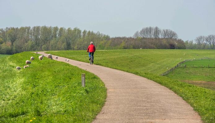 Het stuk dijk in Gameren dat versterkt moet worden, is na het hoogwater van 1995 naast de bestaande dijk aangelegd. Op die manier konden de dijkhuizen gespaard blijven.