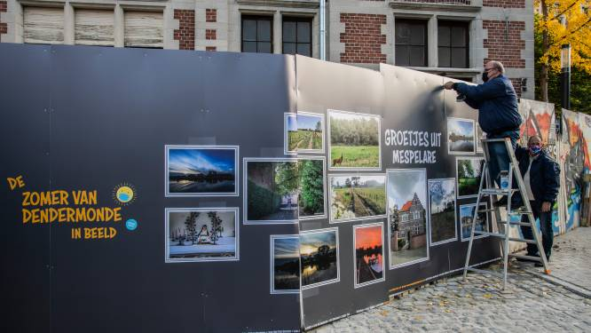 """Grote fotopanelen extra attractie in stadscentrum: """"Met de groeten uit Dendermonde!"""""""