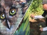 Graffitikunstenaar Joris maakt Hengelo een stukje mooier
