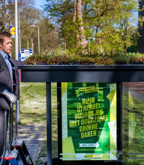 Duurzaam wachten op de bus: 'Groene bushokjes maken het verschil'