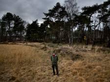 Kwetsbare natuur en een overvolle A67: een lastig verbond