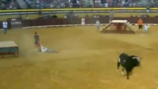 De 'killer-stier' Raton loopt weg, terwijl zijn slachtoffer wordt afgevoerd.