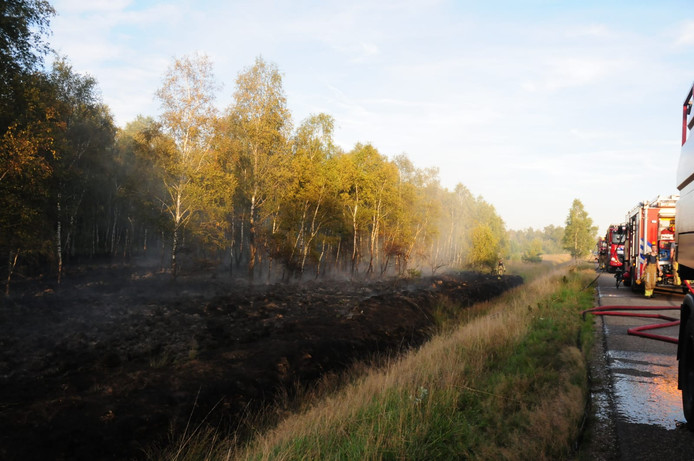 Brandweer bij de natuurbrand in Budel.