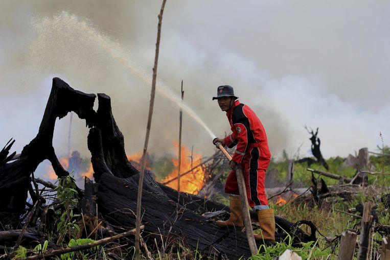 Het Indonesische eiland Sumatra: brand op een stuk land bestemd voor een palmolieplantage, 2016. Beeld REUTERS
