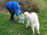 Honden helpen afval op te ruimen