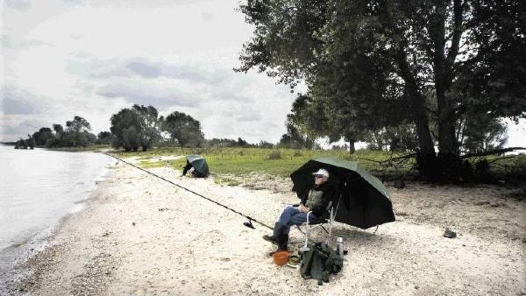 Op de zandoevers langs de Waal bij Ewijk is het goed toeven. (FOTO BART PETERS) Beeld