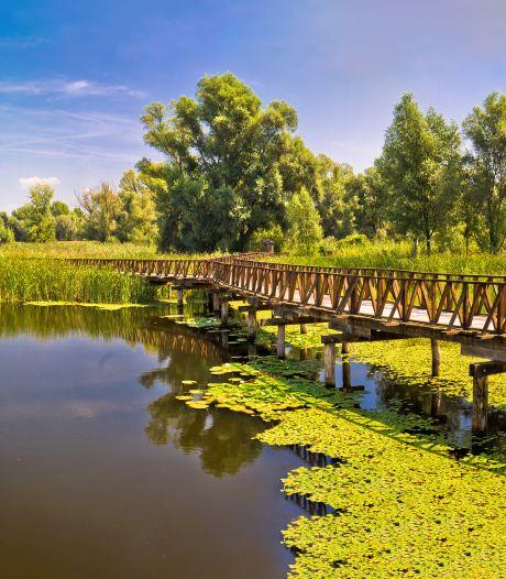 Mountainbiken in Kroatië: moerassen en natuurparken in Slavonië