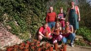 Talbot House verkoopt 800 rozen van De Lovie