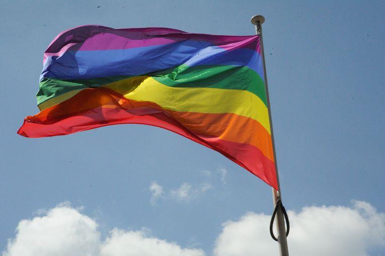 Regenboogvlag wappert op 17 mei aan Leuvens stadskantoor