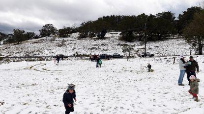 Uitzonderlijk: er ligt een sneeuwtapijt in subtropisch Australië