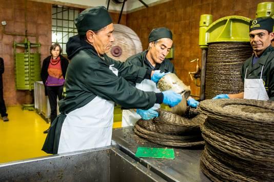Une fois broyée, la pâte d'olives est placée dans des scourtins.