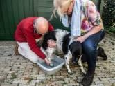 Wandelaars met hond bezorgd om drugsspoor Hatertse Vennen