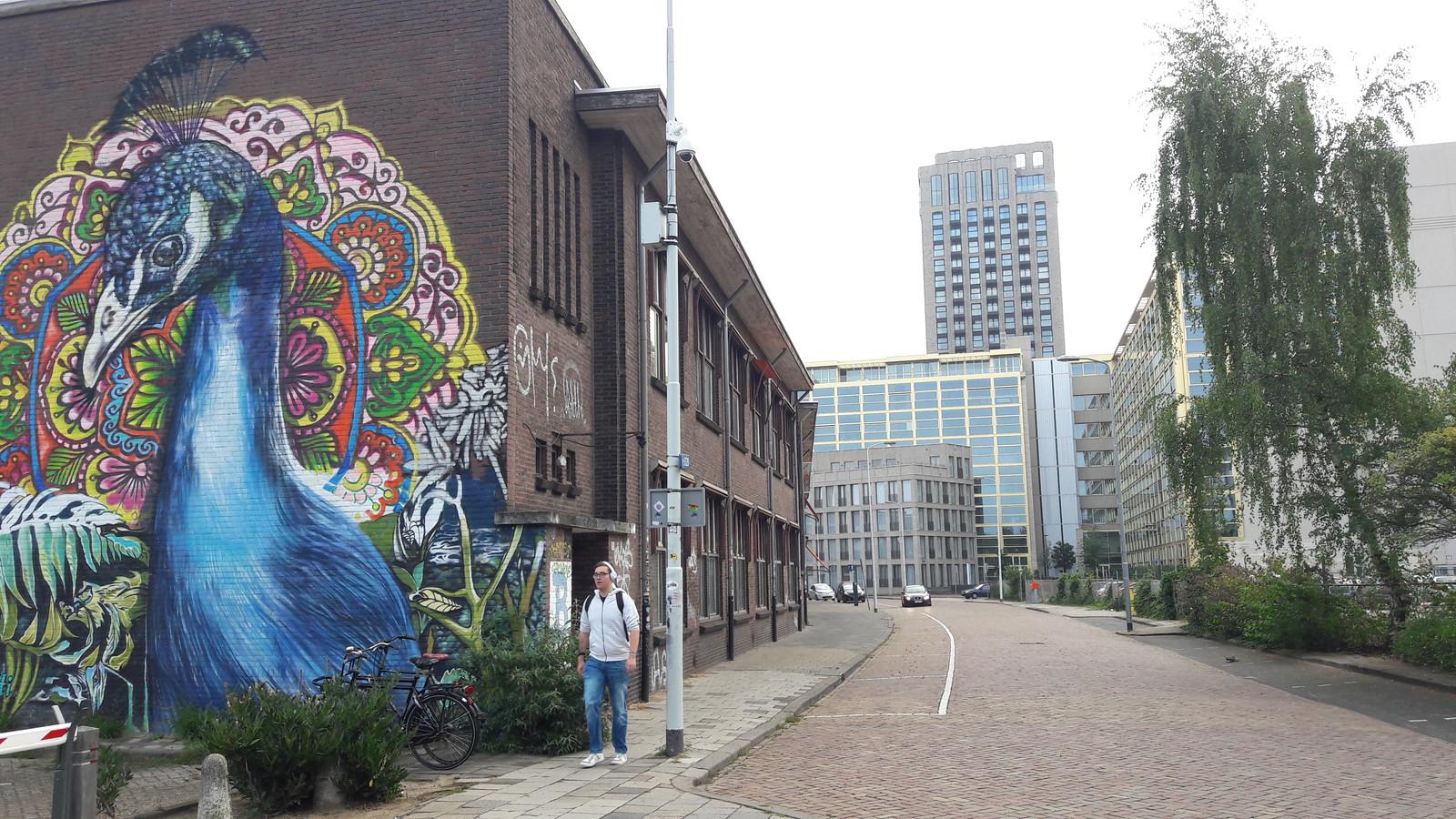 De Gagelstraat in Eindhoven met links het TAC dat deels behouden blijft. De vraag is wat er met deze oude cultuurhistorisch belangrijke straat gaat gebeuren als rechts de Victoriatoren gebouwd wordt. Ook een deel van het TAC wordt vervangen door nieuwbouw.