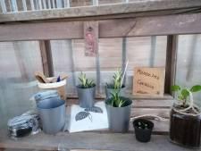 Plantenbieb op het Amelandseplein mag tóch blijven