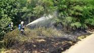 Brand in groene berm slaat net niet over naar Oekensestraat
