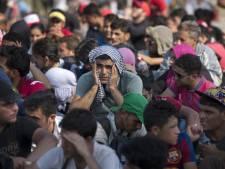 Rode Kruis zoekt 1000 extra mensen voor aanpak vluchtelingencrisis