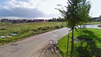 Nieuwe verkaveling in Zellik heet Sint-Corijnsweg