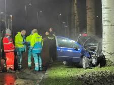Automobilist met slok op klapt op boom in Spijkenisse