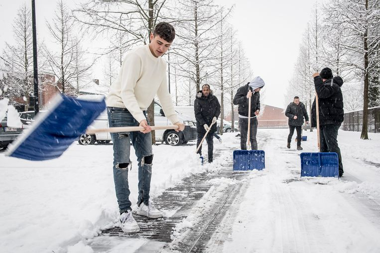 Een groepje enthousiaste asielzoekers kwam deze ochtend sneeuw ruimen op het Marktplein en de centrumparking in Ingelmunster