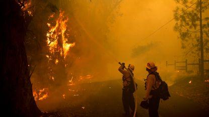 Bosbranden Californië: bijna 200.000 mensen geëvacueerd