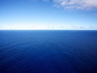 Vervuilde oceanen breken zoutwatervissen zuur op