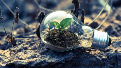 Start saving the planet: 6 makkelijke tips om vandaag al ecologischer te gaan leven