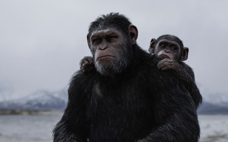 'War For the Planet of the Apes' Beeld imdb
