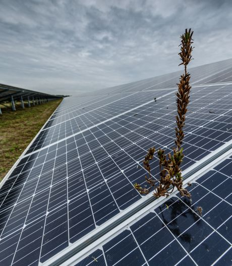 Neuzen in Etten-Leur één kant op, voor plannen duurzame energie