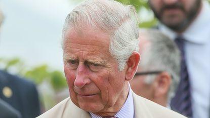 Britse prins Charles zit in het verdomhoekje