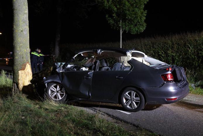 Elektrische Volkswagen botst op boom en belandt op zijn kant in Gemonde