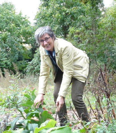 Het dorp van Hilma van Rozendaal: 'Zusters van Liefde hebben veel goeds gedaan'
