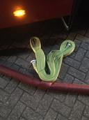 De nieuwe slang is dunner en daardoor flexibeler.