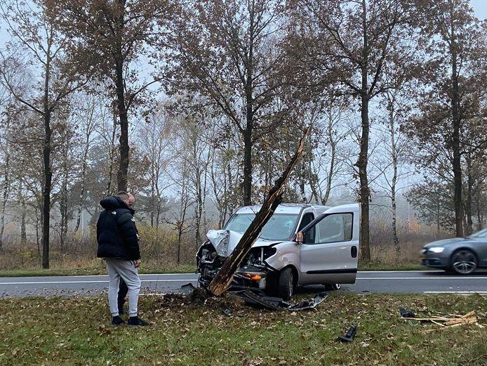 De schade aan boom en bus is aanzienlijk in Arnhem.
