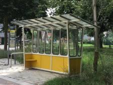 Nostalgie: oud bushokje maakt rentree langs de weg in Rekken