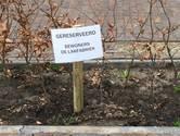 Bewoners en werknemers botsen in Oisterwijk op het KVL-terrein: 'Hier niet parkeren'