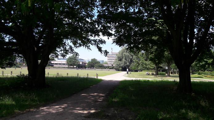 Park De Wezenlanden in Zwolle.