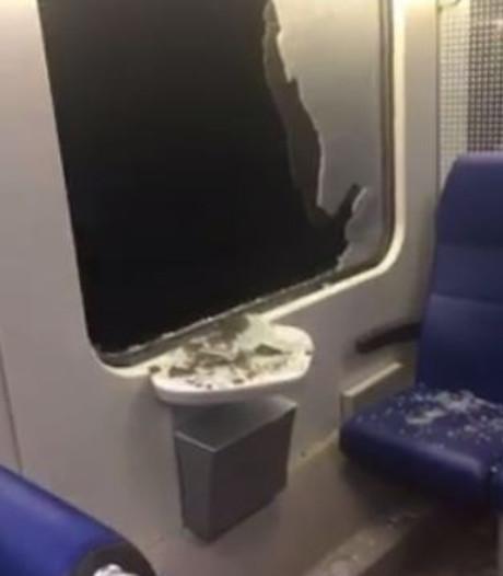 Politie: Treinen in Berghem bekogeld met stukken trottoirtegel