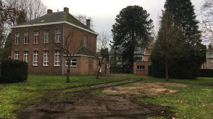 """h-EERLIJK ZOERSEL en OverHal woedend over verwijderde bomen in tuin van pastorie: """"Gevaarlijk precedent"""""""